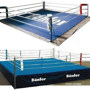 Boxen & Kickboxen