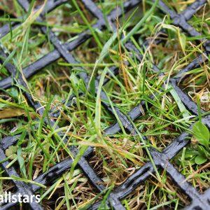 HUCK Rasenschutz-Gittermatte